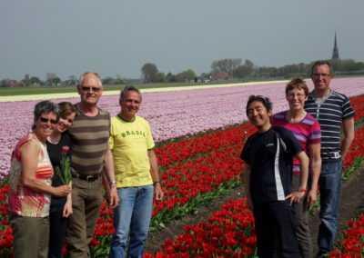 Mr Tulip Tours tulpenveld in het voorjaar